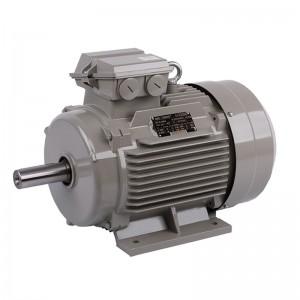 德东(DEDONG)卧式三相异步电动机 YE2-100L1-4-2.2KW /台   可定制